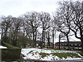 ST3096 : Deciduous trees and snow remnants, Croesyceiliog, Cwmbran by Jaggery