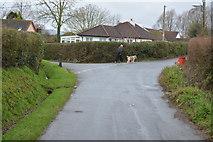 SX9887 : Ebford Lane, Lower Lane junction by N Chadwick