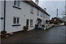 SX9888 : Row of Cottages, Ebford by N Chadwick