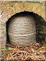 SP1772 : A beehive under the Raised Terrace by Steve Daniels