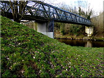 H4772 : Grass bank beside Sandra Jones Bridge by Kenneth  Allen
