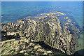 NJ1670 : Sandstone Promontory by Anne Burgess