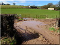 SO4200 : Waterlogged access to a field, Llangwm, Monmouthshire by Jaggery