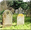 TG2108 : Old gravestones in Section 6 by Evelyn Simak