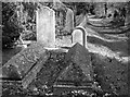 TG2108 : Old graves on the edge of Section 6 by Evelyn Simak
