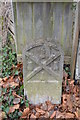 SX4755 : Military Boundary Stone, Victoria Park by N Chadwick