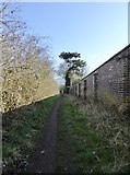 SJ7744 : Public footpath in Madeley by Jonathan Hutchins