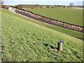 SE2824 : Ardsley Reservoir: piezometer by Stephen Craven