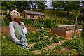 SZ4083 : The Kitchen Garden, Mottistone Gardens by Ian Capper