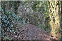 SX9266 : South West Coast Path by N Chadwick