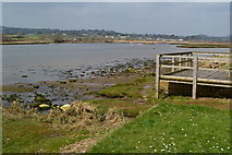 SY2591 : River Axe, looking north from Axmouth by David Martin