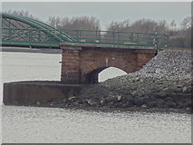 W7871 : Detail of Belvelly Railway Bridge by Redmond O'Brien