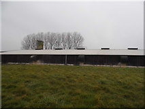 TL9995 : Barn at Church Farm, Rockland All Saints by David Howard