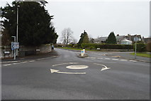 SX9688 : Mini-roundabout, Elm Grove Rd by N Chadwick