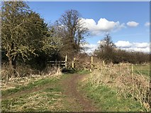SJ7744 : Public footpath junction and stiles by Jonathan Hutchins