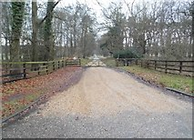 TL8280 : The entrance to Redneck Farm, Elveden by David Howard