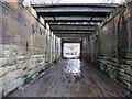 SD5903 : Under the railway bridge South of Liverpool Junction : Week 13