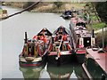 SP7548 : Narrow Boats and Grand Union Canal near Lower Lock Farm : Week 13
