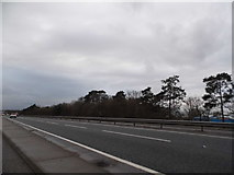 TL6868 : The A11 Red Lodge Bypass by David Howard
