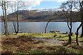 NN0492 : Grassy Headland : Week 13