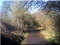 SO8793 : Railway Walk Scene by Gordon Griffiths