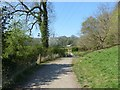 SJ9489 : Path from Chadkirk Bridge by Dave Dunford
