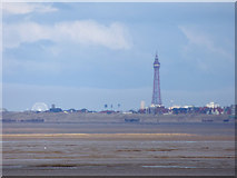 SD3036 : Blackpool Tower seen from Southport Pier by Stephen Craven