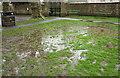 ST5774 : Waterlogging, Redland Green by Derek Harper