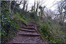 SX9056 : South West Coast Path by N Chadwick