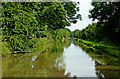 SP4381 : Oxford Canal approaching Stretton Stop, Warwickshire by Roger  Kidd