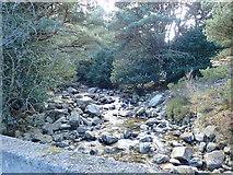 J3629 : The Glen River above Craignagore Bridge by Eric Jones