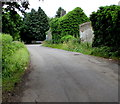 ST6883 : Shades of green in Nibley Lane, Iron Acton by Jaggery