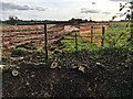 SP3162 : Groundworks at Grove Farm off Harbury Lane, south Leamington by Robin Stott