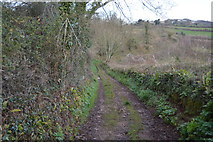 SX9268 : John Musgrave Heritage Trail by N Chadwick