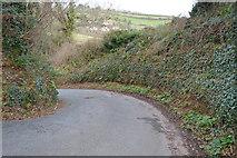 SX9268 : Rockhouse Lane by N Chadwick