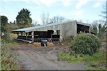 SX9268 : Barn, Maidencombe by N Chadwick