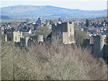 SO5074 : Ludlow Castle by Fabian Musto