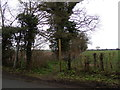TM4978 : Footpath to A1095 Halesworth Road by Adrian Cable