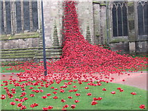 SO5139 : Hereford Cathedral (Weeping Window) by Fabian Musto