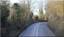 SX9270 : Teignmouth Rd by N Chadwick