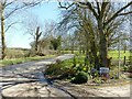 SK6607 : Spring flowers at Lodge Farm entrance by Alan Murray-Rust