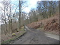 NY2924 : The former road to Keswick through Brundholme Wood by Christine Johnstone