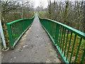 SK1684 : Sagging footbridge (2) - Hope Catenary Footbridge by John M