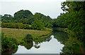 SP4977 : Oxford Canal near Newbold-on-Avon, Warwickshire by Roger  Kidd