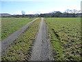 NY1735 : Track to the sewage works near Sunderland by Christine Johnstone