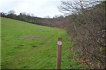 SX9369 : Permissive path by N Chadwick
