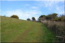 SX9370 : South West Coast Path by N Chadwick