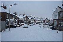 TQ5840 : Snow, Mereworth Rd by N Chadwick