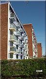 ST5973 : Flats, Lamb Street, Bristol by Derek Harper