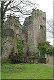 SO5074 : Ludlow Castle by Stephen McKay